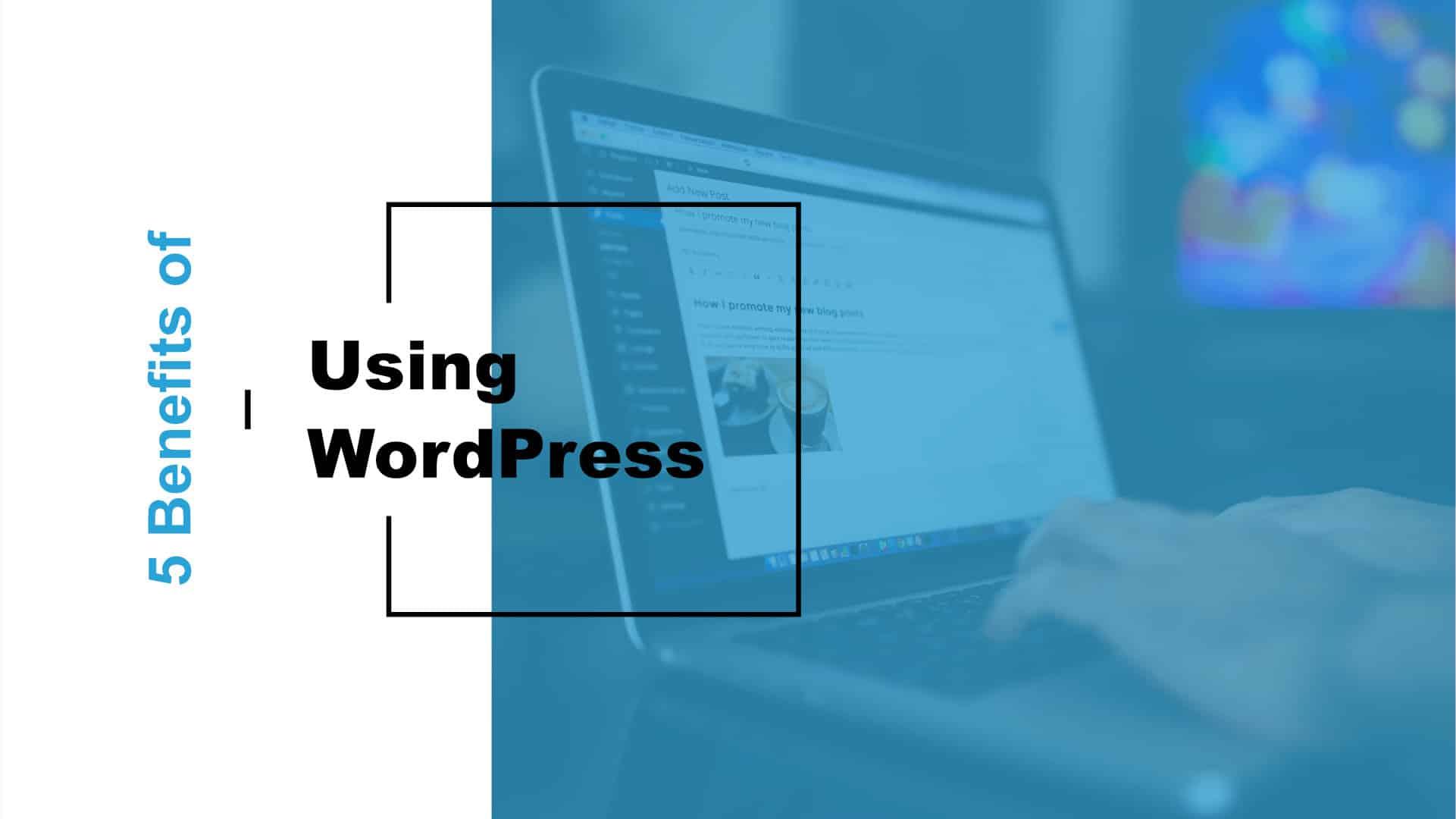 Five Benefits of Using WordPress Featured Image